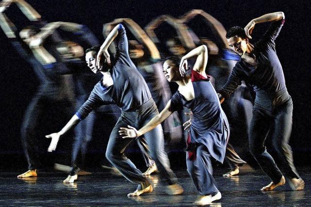 Limón Dance Company in Offenburg, Lörrach und Villingen-Schwenningen: 70 Jahre lebendige Geschichte