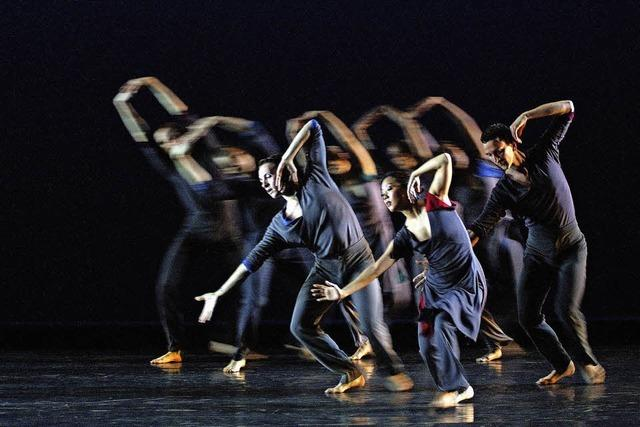 Limón Dance Company kommt in den Burghof