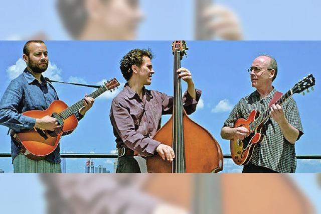 Trio Stephan Crump Rosetta spielt im Museum für moderne Kunst in Straßburg