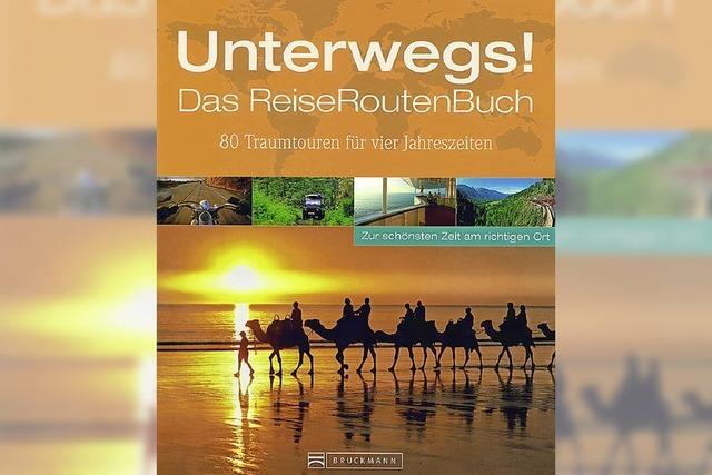 Klaus Viedebantt: Das Reiseroutenbuch