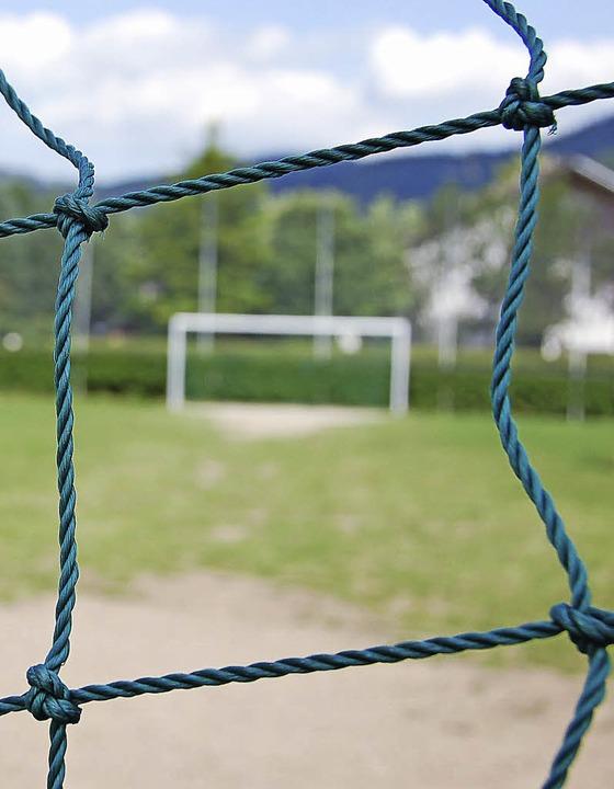 Sportplatz und Straßensanierung: Dafür...orben in diesem Jahr Geld ausgegeben.   | Foto: Andrea Gallien/Tanja Bury
