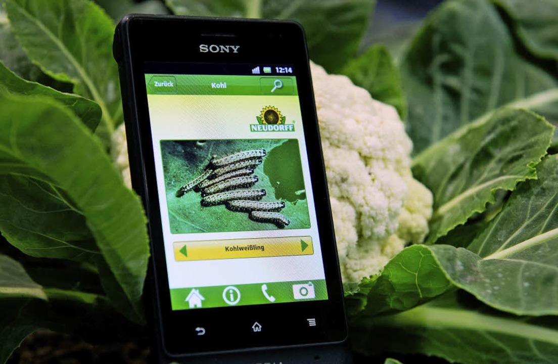 Helfer in  der Hosentasche:Mit den ri...Smartphone sogar bei der Gartenarbeit   | Foto: dpa