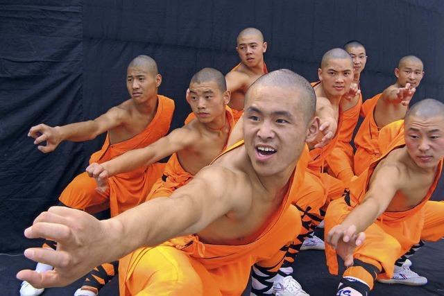Artistischer Kampfsport im Zeichen des Qi