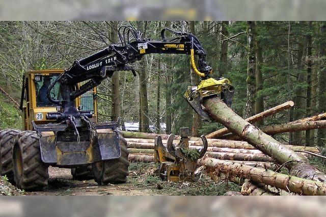 Holzvermarktung ist nicht alles