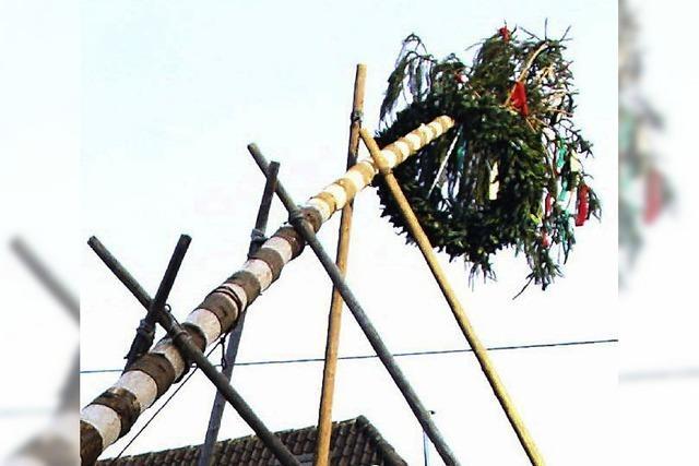In Lörrach, Binzen und Adelhausen werden Narrenbäume aufgestellt