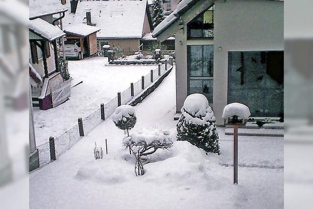 Der Winter lässt auf sich warten