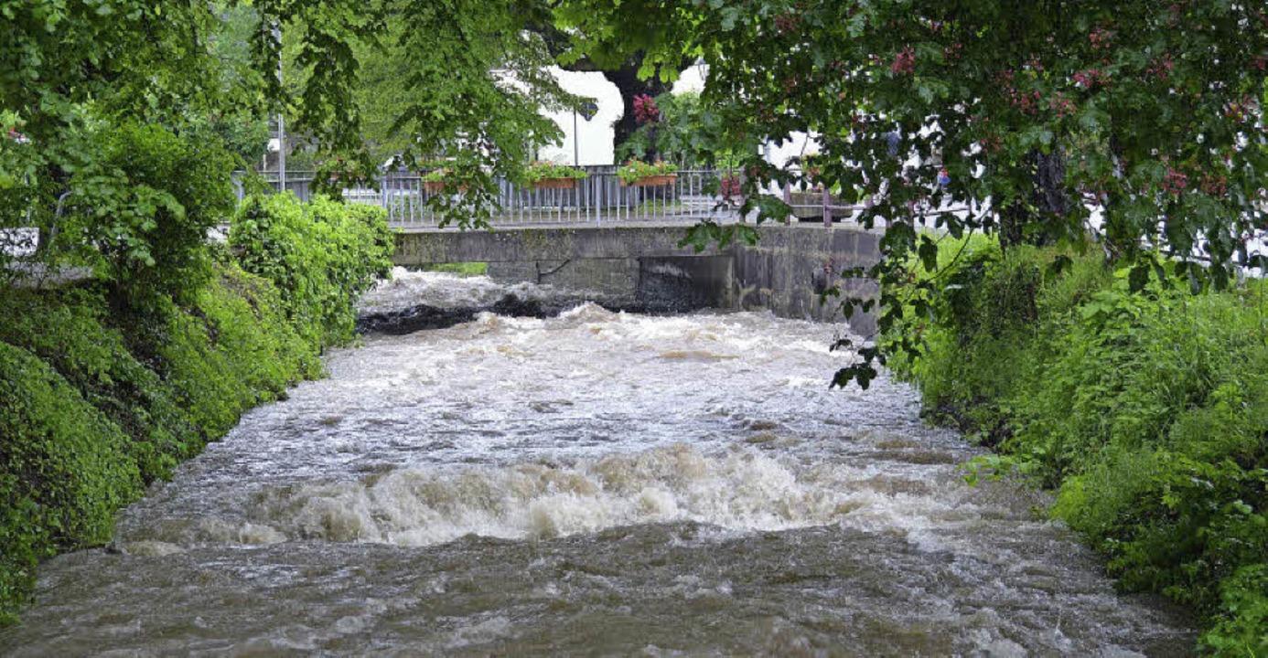 Auch in Badenweiler gibt es eine Hochw...en Bach im Juni 2013 in Niederweiler.   | Foto: sigrid umiger