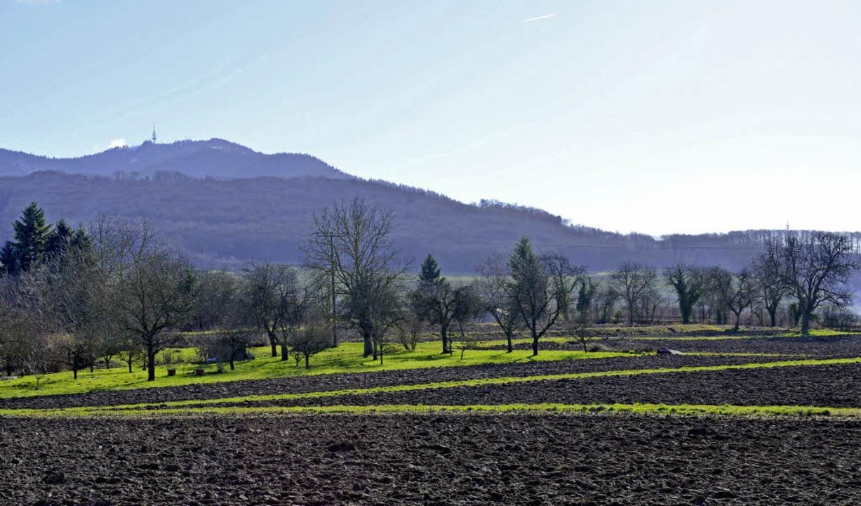 Die Landschaft des Markgräflerlands am Fuß des Blauens   | Foto: Umiger