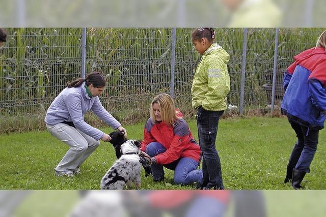 Wallbach bietet Hundefreunden Asyl