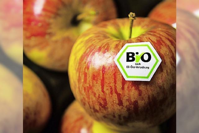 Die Energiewende bremst die Biobauern