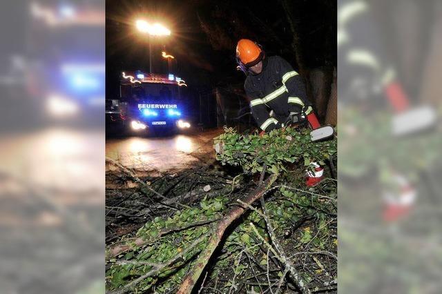 Sturm fegte Dutzende Bäume um – Straßen blockiert, Autos beschädigt