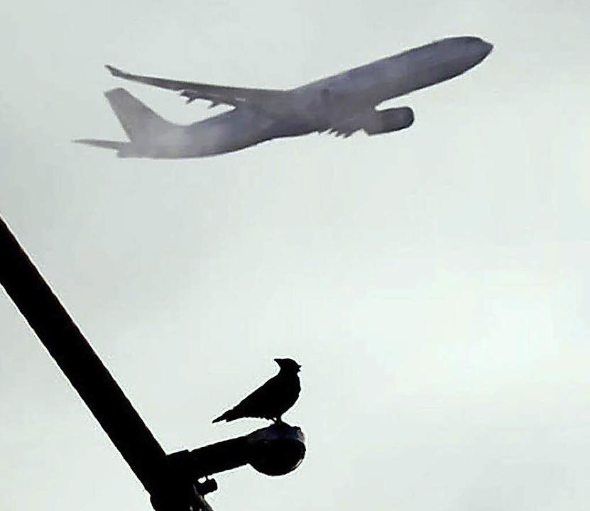 Fluglärm ist immer Thema.  | Foto: dpa