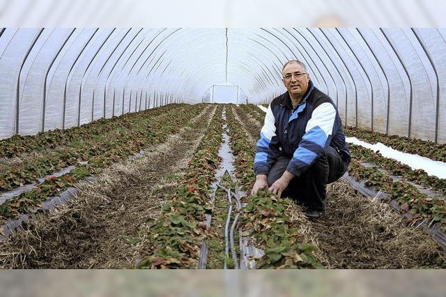 Die Arbeit geht einem Bauern nie aus