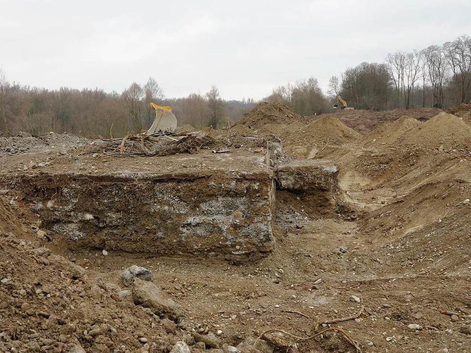 Viel ist von dieser Bunkerruine am  Ne...st sie dennoch ein interessanter Fund.  | Foto: Dorothee Philipp