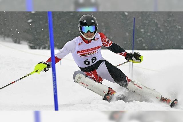 Demattio kann auch Slalom