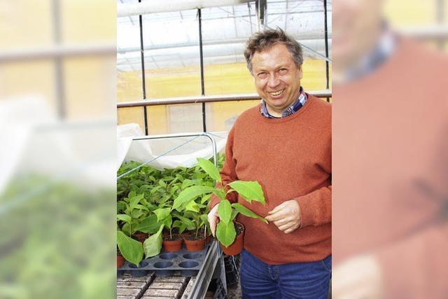Indische Exoten und Kräuterpflanzen