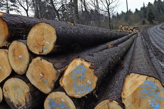 Mehr Großhiebe im Privatwald