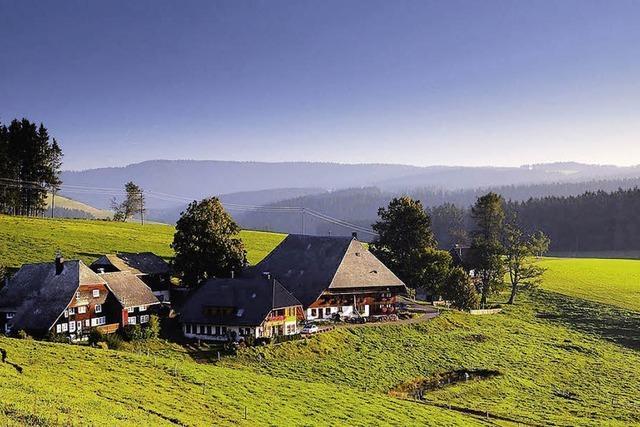Liebeserklärung des Fotografen an den Schwarzwald
