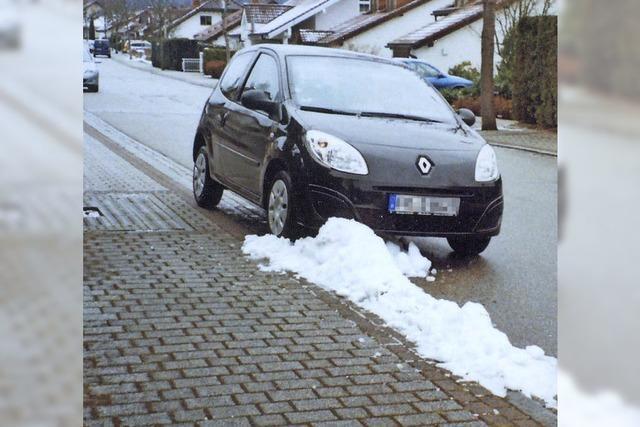 AUCH DAS NOCH: Schneezwist