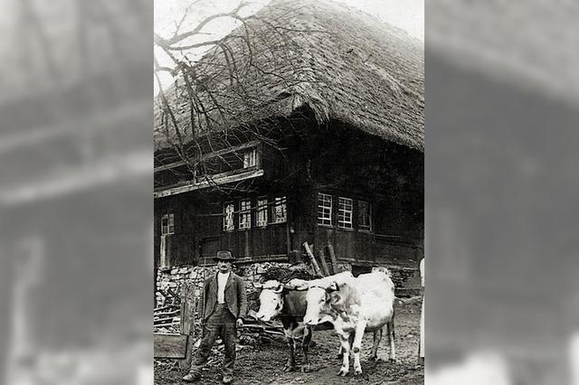 Alte Bauernhöfe und ihre Geschichte(n)