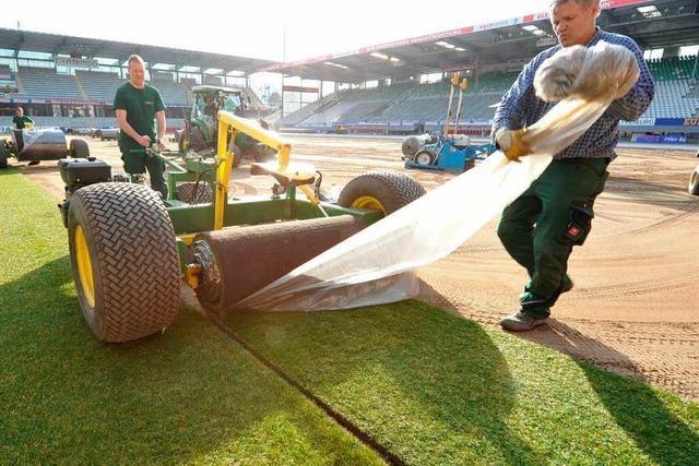 Grün von der Rolle: SC-Arena bekommt einen neuen Rasen