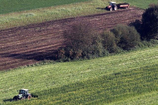 Reform hilft vor allem Kleinbauern