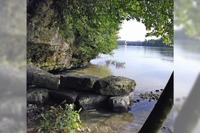 Rheinuferweg steht in der Kritik