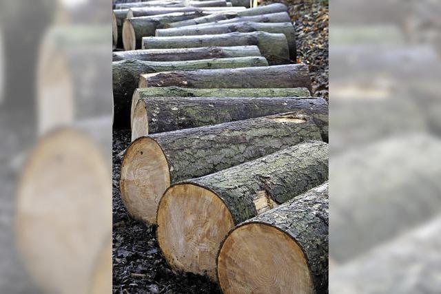 Bald weniger Holz auf dem Markt?