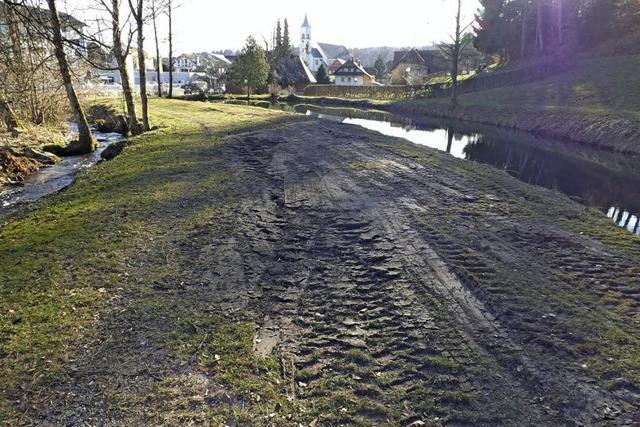 Aufgeräumt im Hirschgarten-Teich