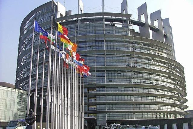 Europa vor den Wahlen