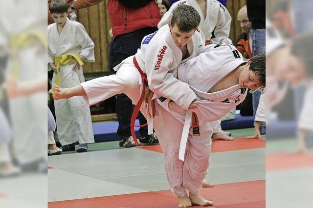 Kleine Judokas ganz groß