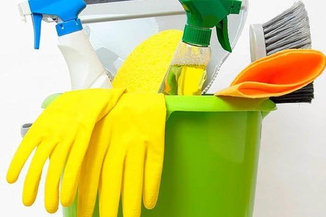 Die Hausfrau – eine bedrohte Spezies
