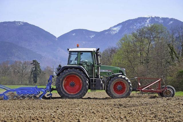 Wie Landwirte im Südlichen Breisgau den frühen und warmen Frühlingsbeginn beurteilen
