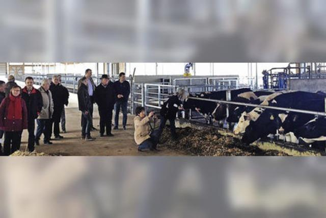 Agrargenossenschaft baut Melkanlage für 800 Kühe