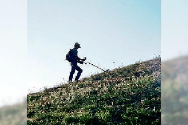 Rheinfelden: Mit Metalldetektor illegal auf Schatzsuche