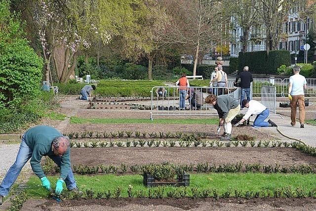 Freiwillige Gärtnerarbeit im Namen der Rose
