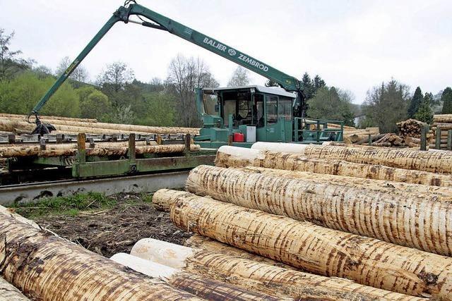 Land hält trotz Kritik an zentralem Holzverkauf fest