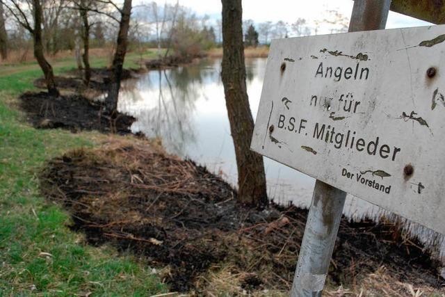 Angler zündete das Schilf am Krebsmühlenweiher an