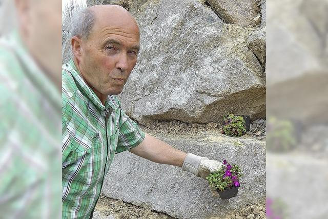 Blumenpaten für alle Jahreszeiten