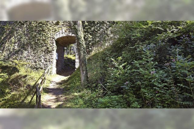 Alte Burg soll bald Touristenziel sein