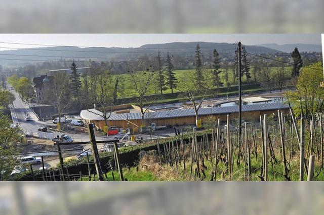 Eröffnung des Riehener Naturbads auf Juni verschoben