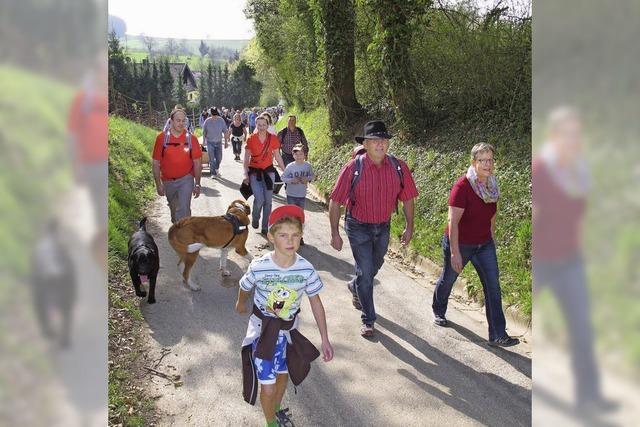 Unterwegs rund um Tannenkirch