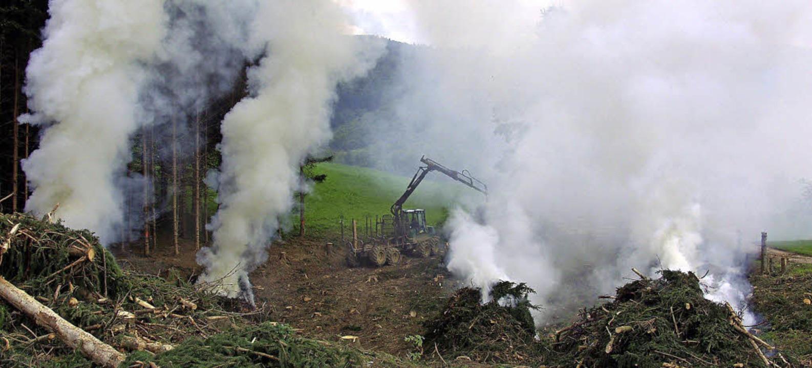 Jede Menge verbrannte Erde hinterlässt Görwihls scheidender Rektor Ivan Simunic.    Foto: Erich Meyer