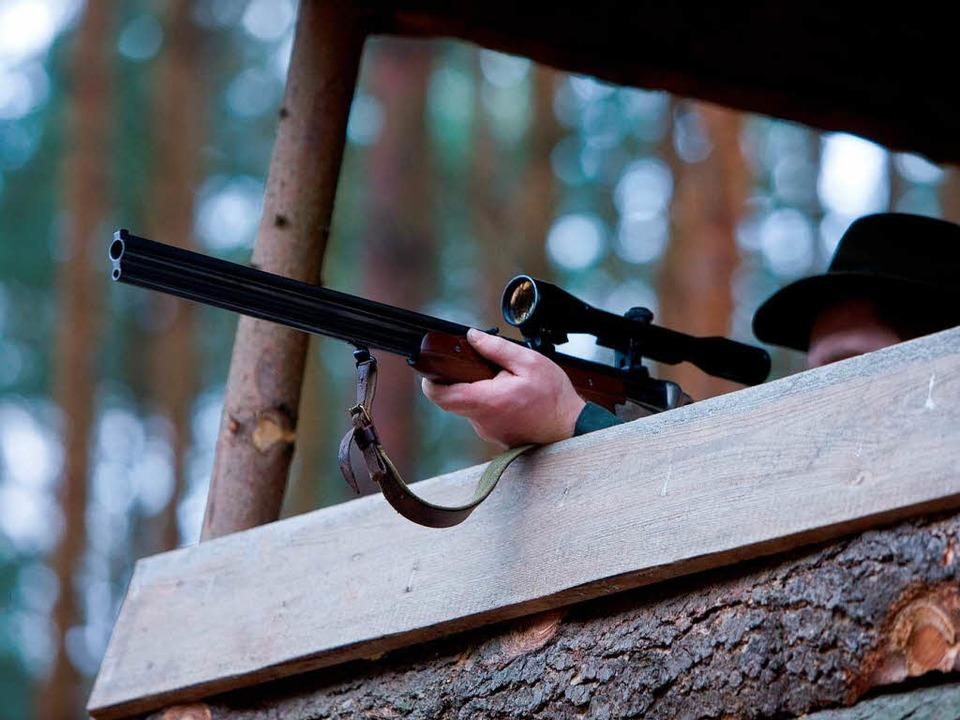 Debatten auf dem Hochsitz: Ist das neue Jagdgesetz sinnvoll?  | Foto: dpa