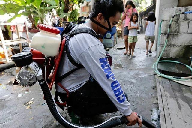 Das Dengue-Fieber breitet sich aus