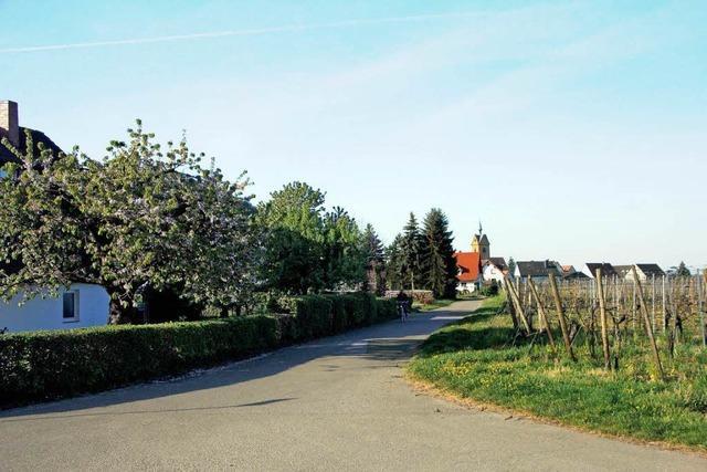 Neues Baugebiet in Niederrotweil