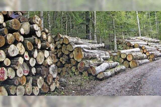Waldbesitzer müssen derzeit auf der Hut sein