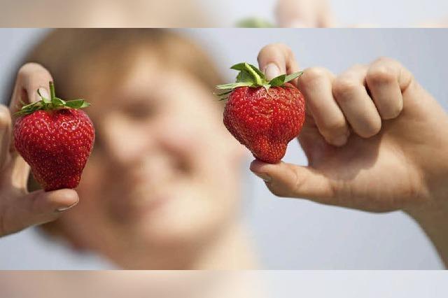 Erdbeeren früh wie nie