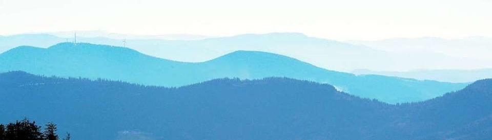 Der Schwarzwaldverein feiert einen runden Geburtstag