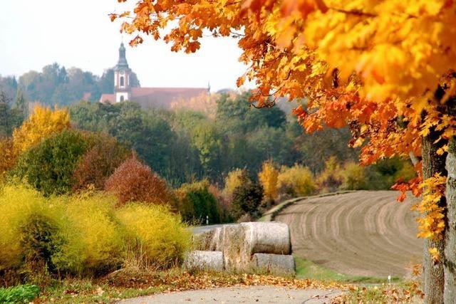 Der Tourismus in Ettenheim ist im Aufwind